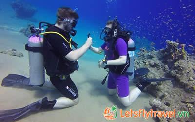 Đảo Hòn Mun Nha Trang - Hệ sinh thái biển tuyệt đẹp