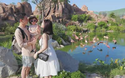 Review kinh nghiệm đi Vinpearl Land Nha Trang