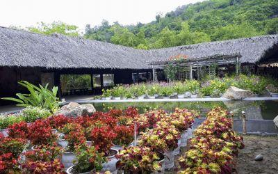 I Resort Nha Trang - Dịch vụ tắm bùn khoáng cực đã